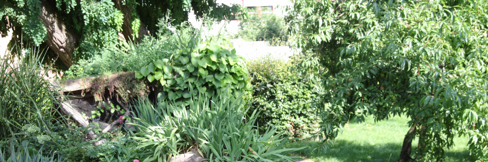 Ihre Grünflächen und Gartenanlagen so wie sie sein sollten